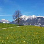 Blick vom Ortsteil Kammerland Richtung Karwendel